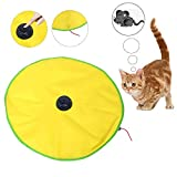 4 Speeds Cat's Meow Undercover Mouse Cat Toy Electronic Interactive Kitten Pet Play Toy