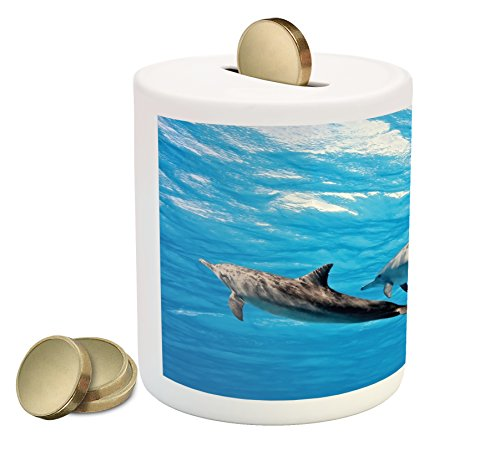 Ambesonne Dolphin Piggy Bank, Underwater Photography of Dolphins Happily Swimming Ocean Animal Life Image Print, Printed Ceramic Coin Bank Money Box for Cash Saving, Blue Grey