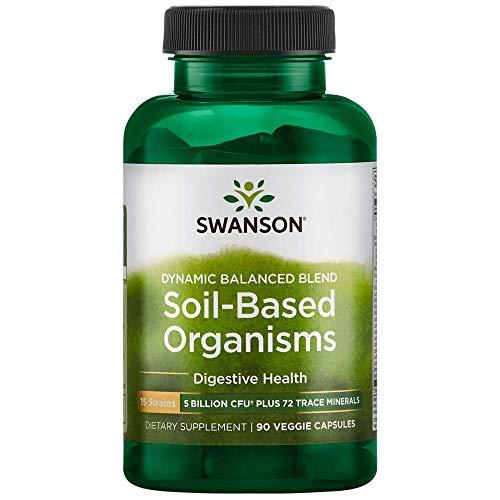 Swanson Dynamic Balance Blend Soil-Based Organisms 5 Billion Cfu 90 Veg Capsules