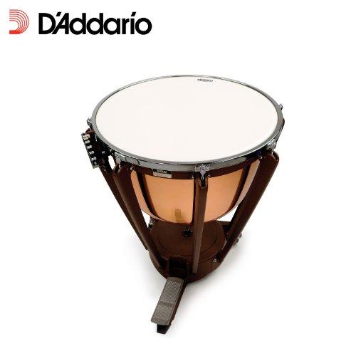 Evans Orchestral Timpani Drum Head, 33 inch D' Addario &Co. Inc ET33