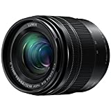 PANASONIC LUMIX G VARIO LENS, 12-60MM, F3.5-5.6 ASPH, MIRRORLESS MICRO FOUR THIRDS, POWER OPTICAL I.S, H-FS12060 (USA BLACK)