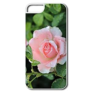 Flower Pattern Hardback For SamSung Note 3 Case Cover SamSung Note 3/Rose Oil Painting