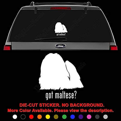 Got Maltese Dog Pet Die Cut Vinyl Decal Sticker for Car Truck Motorcycle Vehicle Window Bumper Wall Decor Laptop Helmet Size- [15 inch] / [38 cm] Tall || Color- Gloss White