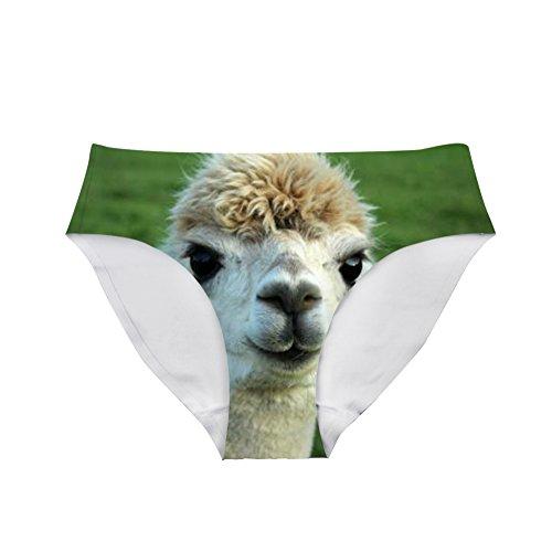 Top Hipsters Panties
