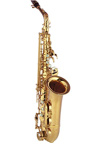 Used, Yamaha YAS-82Z Custom Z Series Alto Saxophone YAS-82Z for sale  Delivered anywhere in USA