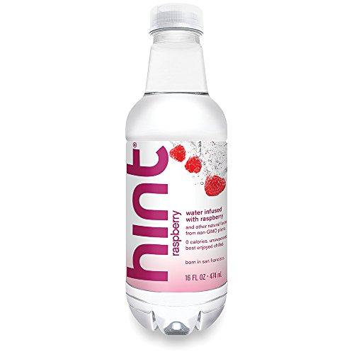 Hint Water Raspberry Ounce Bottle product image