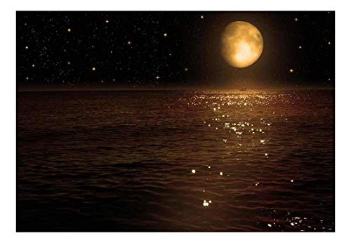An Ocean View Resting Below A Night Time Sky Wall Mural