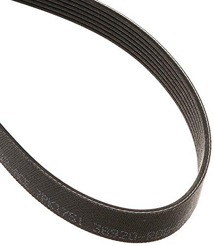 Genuine Honda 38920-RBB-E03 A/C Compressor Belt