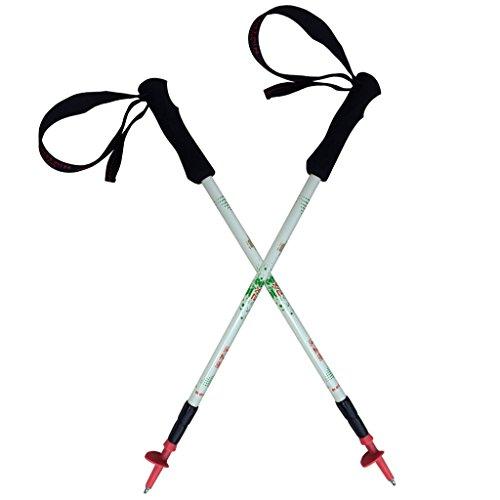 A Pair of Mountain YOYO X2V2.0 White Carbon Fiber Ultra Light Weight (169g, 6oz) Walking Pole Trekking Pole Walking Stick Telescoping Men Women 2 Pack MYYX2WH2