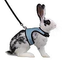 Arnés suave ajustable de Niteangel con correa elástica para conejos (L, azul)