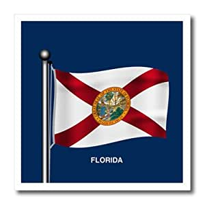 ht_180532_3 777images Flags and Maps - States - Waving flag of the state of Florida with dark blue background - Iron on Heat Transfers - 10x10 Iron on Heat Transfer for White Material