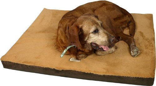 Armarkat Memory Foam Orthopedic Pet Bed Pad in...