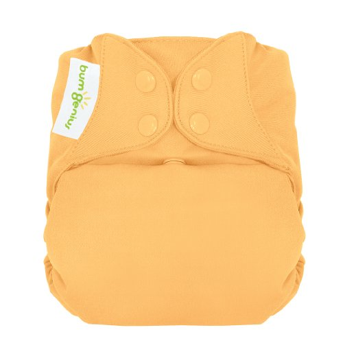 bumGenius Freetime All-in-One One-Size Snap Closure Cloth Diaper (Clementine)
