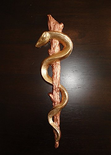 Caduceus Rod of Asclepius