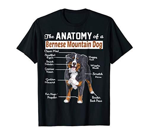 The anatomy of a Bernese Mountain Dog shirt