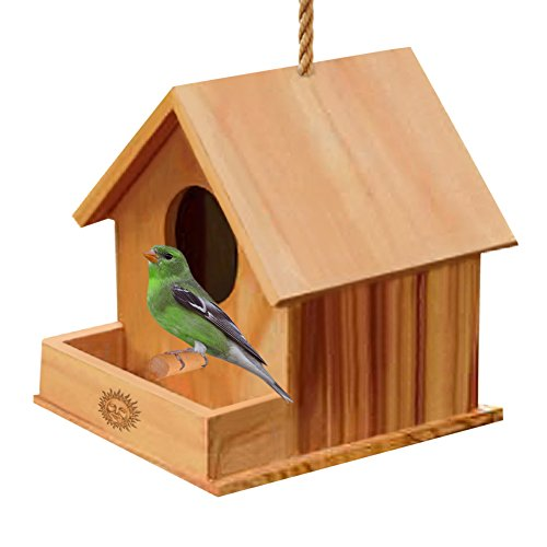 SunGrow Paintable Bird House, 6.7 Inches, Bird Watching Made Easy, Attracts Small Birds Like Finch and Parakeet, Craft for Kids, Home Decor, Hang Indoors or Outdoors, Durable Construction, 1 Piece