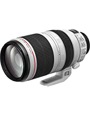 Canon lens EF100-400MM F4.5-5.6 L IS II USM