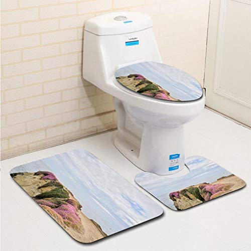 MTSJTliangwan 3-Piece Bathroom Set, Bathroom Rug + Contour pad + lid Toilet seat, Lands end Comfortable Flannel Rug ()