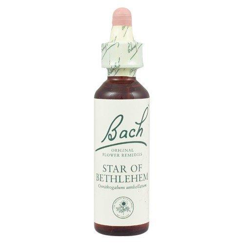Bach Original Flower Remedies - Star of Bethlehem | 20ml