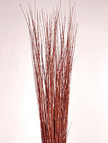 Green Floral Crafts 3-4 ft Tall Burnt Red-Orange Asian Willow, Bunch of 50-60 Tall Sticks (Vase Not Included)