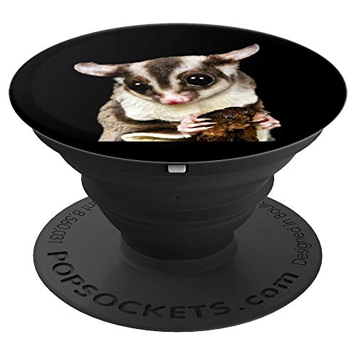 - Sugar Glider Pet Photo Art Design - PopSockets Grip and Stand for Phones and Tablets