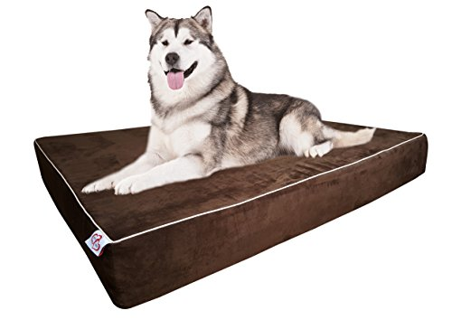Cheap Large Dog Bed Pillow Extra Big Pet Orthopedic Dual Layer Memory Foam | Therapeutic for Arthritis Dysplasia | Non-slip Base Bonus Extra Washable Cover 44x35x6 by OnePet-TwoPet