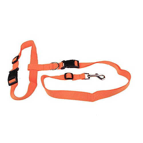 2018Popular Traction Pulling Leash Pet Dog Running Jogging Convenient Safe (Orange) ()