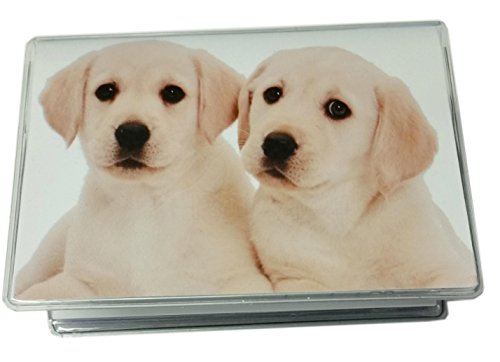 RFID Protected Lab Puppies Debit Card Holder Cover w/Register & Photo Insert