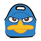 Phineas And Ferb Flynn Fletcher Danny Jacob Lunch Bag Portable Lunch Box Insulated Lunch Tote Soft Bento Cooler Thermal Bags