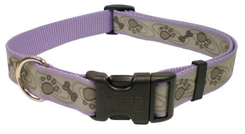Coastal Pet Products Lazer Brite Adjustable Reflect Collar Small 5/8 Inch Blue Paw Bone