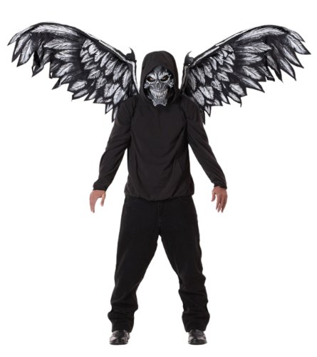 [Fallen Angel Mask and Wings (Black) Accessory] (Angel Wings For Halloween Costumes)