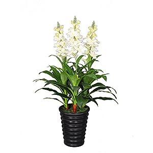 AMERIQUE Unique and Gorgeous 3' Tuberose Artificial Silk Flower Arrangement, with Fancy Decorative Pot, Feel Real Technology, Super Quality, White 2