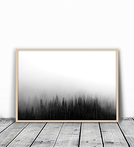 Forest Print, Forest Photography, Woodland Print, Black and White Forest, Forest Art, Nature Photography, Nature Wall Art, Minimalist Art, Minimalist Print, Forest Wall Art, Minimalist Art, 8x10