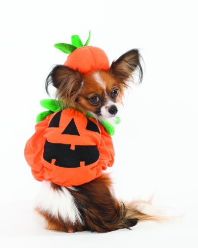 Fashion Pet Halloween Pumpkin Costume for Dogs,