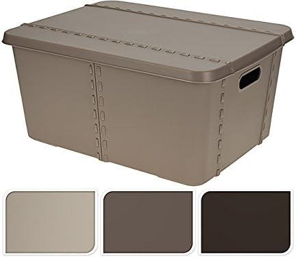 Caja P. ropa 47 x 35 x 21 501000340: Amazon.es: Hogar