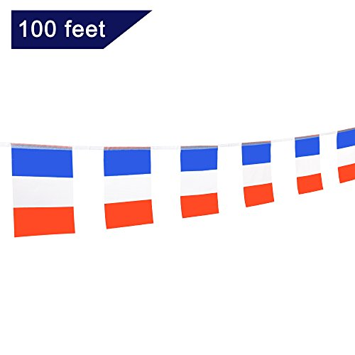 0 Feet French Flag National Country Pennant Flags Banner,Party Decorations For Grand Opening,World Cup,Olympics,Bar,School Sports Event,International Festival Celebration (Party Pennant Flag)