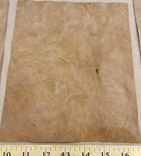 "Madrone Burl wood veneer 6-7/""/"" x 8/""-9/"" with no backing raw veneer AA grade 1//42/"""