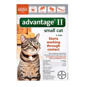 Advantage II 6pk Cat Orange 1-9 Lbs