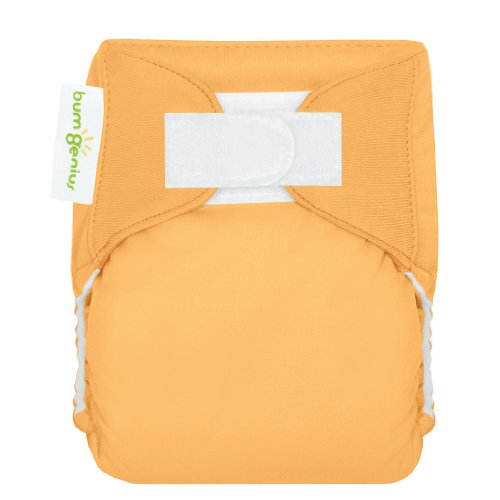 bumGenius All-in-One Newborn Cloth Diaper - Fits Babies 6 to 12 Pounds (Clementine)