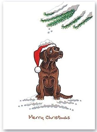 Chocolate Labrador Retriever Christmas Card Lab Xmas Kritters ...