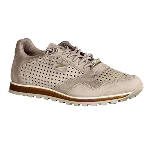 Cetti Cetti Grigio Donna Sneaker Grau Sneaker RYYqw84r