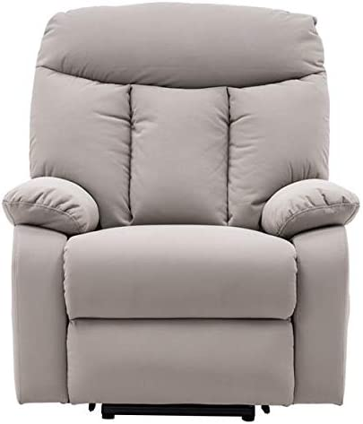 BAOLUOX Electric Massage Lift Chair, Electric Lift Recliner with Heating and Vibration Function, Massage Recliner, Plush Fabric Heavy Duty Electric Sofa Home Living Room Chair