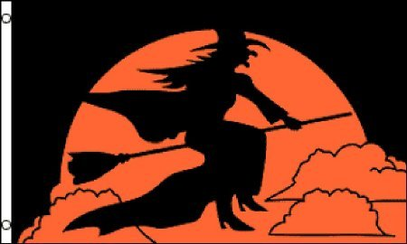 Halloween Witch 3x5 ft polyester Flag ()