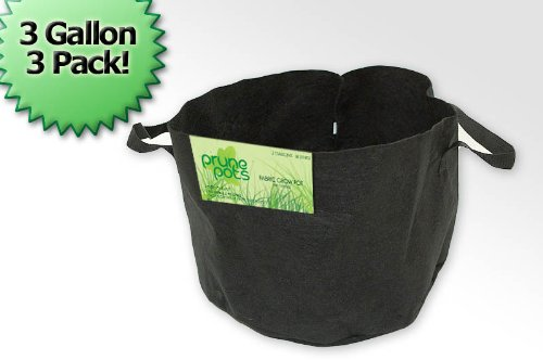 3 Gallon Prune Pots Fabric Grow Pots  3 Bag Set