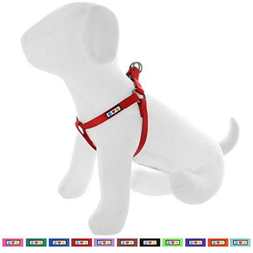 Pawtitas Solid Color Step in Dog Harness or Vest Harness Dog Training Walking of Your Puppy Harness Small Dog Harness Red Dog Harness
