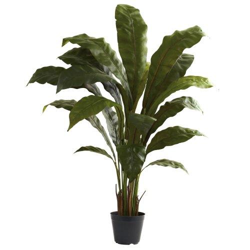 Nearly Natural 6739 Birdsnest Plant, 3.5-Feet, Green