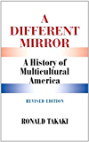 A Different Mirror
