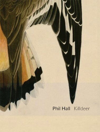 Killdeer: essay-poems (Department of Critical Thought)