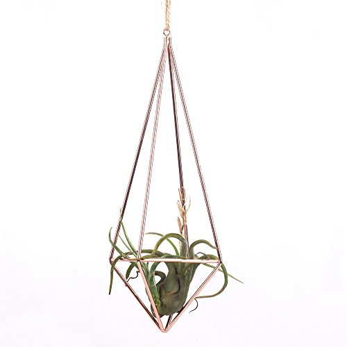 Rustic Style Freestanding Wall Hanging Quadrilateral Pyramid Shape Geometric Metal Tillandsia Air Plants Rack Holder Rose Gold 10inches Height No Plants