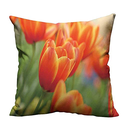YouXianHome Home DecorCushion Covers red Yellow Tulips Flower Shot from Below Macro Close up with Tulip Background Pattern Comfortable and Breathable(Double-Sided Printing) 17.5x17.5 inch